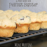 Chocolate Chip Banana Peanut Butter Mini Muffins | MomsTestKitchen.com | #SecretRecipeClub