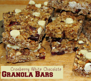 Cranberry White Chocolate Granola Bars